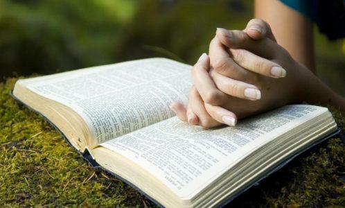 reading-bible-outside4